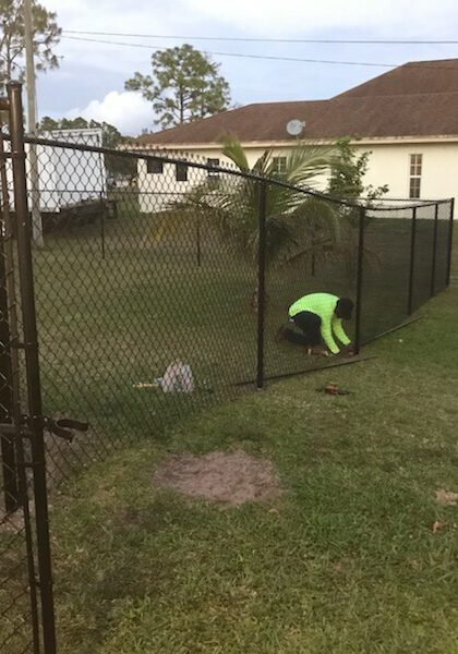 best chain link fences jupiter florida